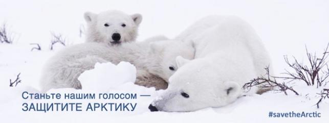 В борьбе за сохранение прекрасной Арктики нам необходим Ваш голос!