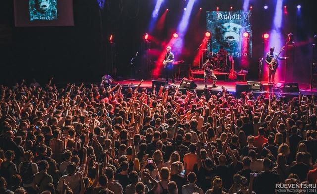 ТОП концертов недели!