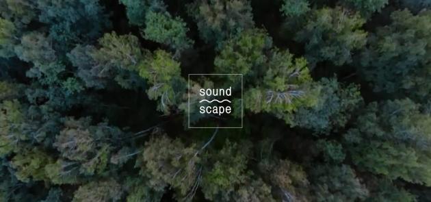 8-10 июля в Никола-Ленивце пройдёт фестиваль Soundscape